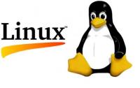 Basic Linux Hosting